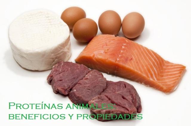 Las proteínas con un valor biológico alto